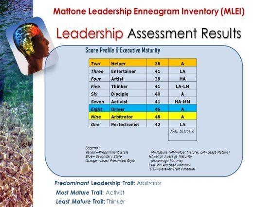 Leadership Assessment Results - John Mattone