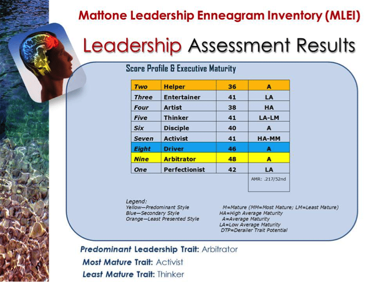 MLEI | Leadership Assessment | John Mattone