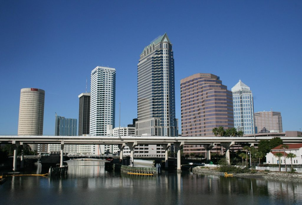 tampa executive coaching